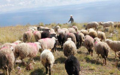 Práticas de gerenciamento de projetos numa viagem: Expedição Mundo Andino (parte 3 de 4)